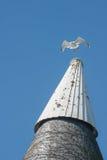 Чайка на доме oast Стоковые Фото