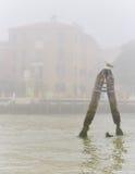 Чайка отдыхая в туманном дне Стоковая Фотография RF