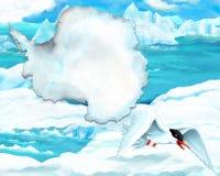 Чайка шаржа с картой континента Стоковое Изображение