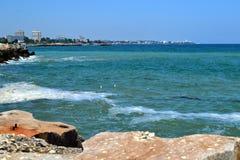 Чайки белого моря Стоковая Фотография