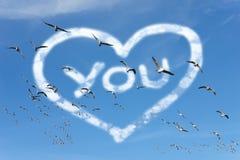 Чайки летая в небо Стоковое Фото