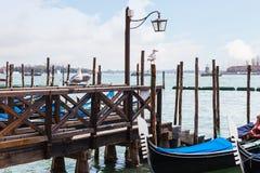 Чайки и гондолы в венецианской лагуне Стоковые Изображения RF