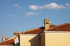 Чайки на крыше   Стоковая Фотография RF