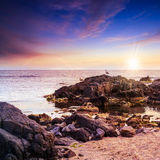 Чайки сидят на больших валунах около захода солнца моря наблюдая Стоковое Изображение