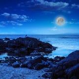 Чайки сидят на больших валунах около луны моря наблюдая Стоковое Изображение