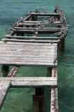 Чайки сидя на руинах пристани Стоковое Фото