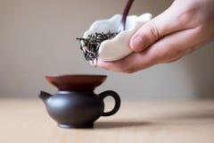 Чайник Брайна Стоковые Изображения