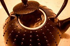 Чайник литого железа Стоковая Фотография RF