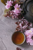 Чайник и чашка чаю с ветвью цветения Стоковая Фотография RF
