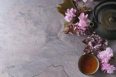 Чайник и чашка чаю с ветвью цветения Стоковая Фотография
