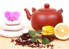 чайник цветка Стоковые Изображения