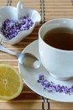 Чай лаванды Стоковое Изображение RF