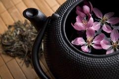 чай бака Стоковая Фотография RF