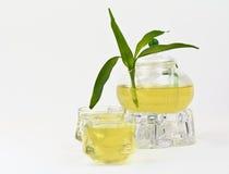 чай бака bamboo стекел зеленый Стоковое Изображение RF