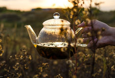 Чай вечера стоковая фотография rf