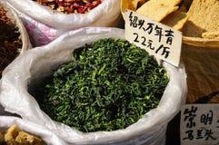 Чай вечнозелёного растения Shaoxing Стоковое Фото
