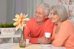 Чай возмужалых пар выпивая Стоковые Фотографии RF