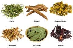 чай высушенный ассортиментом травяной Стоковое Изображение RF