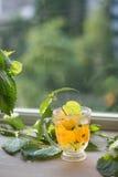 Чай вливания Стоковое Фото