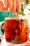 Чай в прозрачной кружке с специями Стоковые Изображения