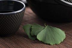 Чай гинкго стоковая фотография