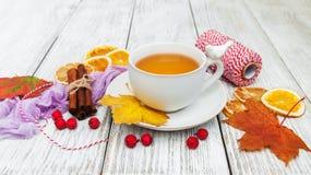 чай горячих специй Стоковое Изображение RF