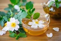 Чай лепестков розы Стоковые Фото