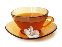 Чай жасмина зеленый Стоковая Фотография RF
