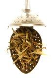 чай жасмина Стоковое фото RF