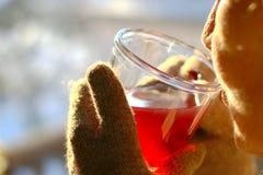 Чай зимы стоковые изображения