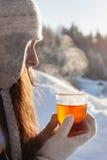 Чай зимы Стоковые Изображения RF