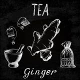 Чай имбиря травяной Комплект доски мела элементов Стоковое Фото