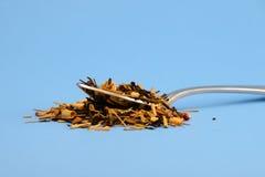 Чай и ложка Стоковое Фото
