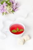 Чай и шоколад белизны стоковая фотография