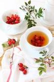 Чай и ягоды плода шиповника Стоковые Фото