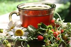 чай клубники Стоковая Фотография