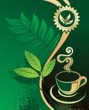 чай конструкции предпосылки зеленый иллюстрация штока