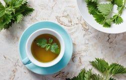 Чай крапивы и свежие листья крапивы Стоковое Изображение