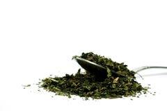 чай крапивы Стоковые Изображения RF