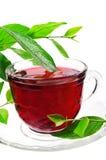 чай красного цвета цветка чашки Стоковое Изображение