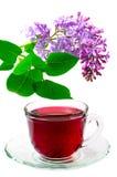 чай красного цвета hibiscus Стоковая Фотография