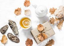 Чай лимона зеленый, домодельный подарок, настроение на светлой предпосылке, взгляд сверху осени Уютный натюрморт дома осени стоковое фото