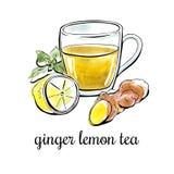 Чай лимона имбиря иллюстрации вектора нарисованный рукой Иллюстрация вектора
