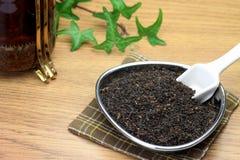 чай листьев Стоковое Фото