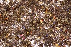 Чай лист с цветками и плодоовощами стоковые изображения rf