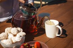 Чай мальчика и девушки отдыхая и выпивая около озера стоковое изображение