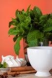 Чай мяты травяной с печеньями Стоковое Изображение RF