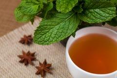 Чай мяты травяной Стоковое Изображение