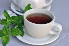 чай мяты Стоковые Изображения