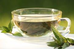 Чай мяты Стоковое Изображение RF